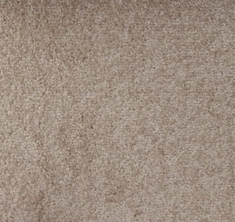 Echo Carpet Mushroom 334
