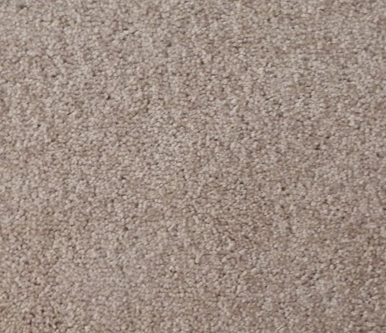 Echo Carpet Mocha 329