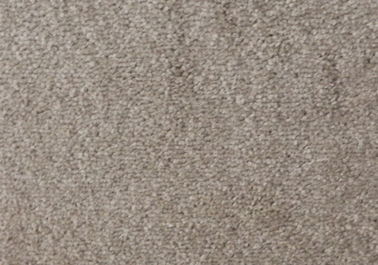 Echo Carpet Pebble 157