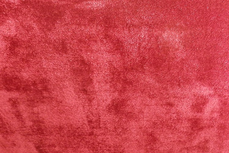 Serene Red Rug
