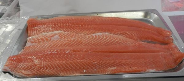 Australian Salmon whole side filleted